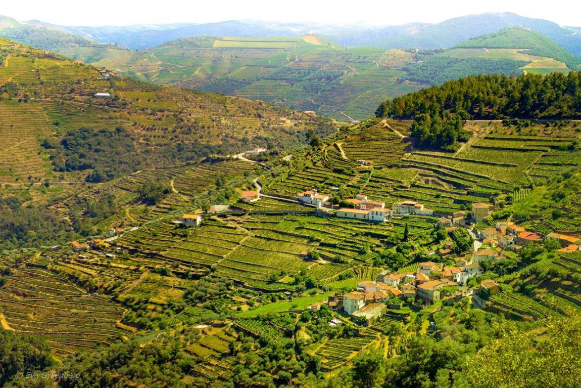Dourodalen - Portugal