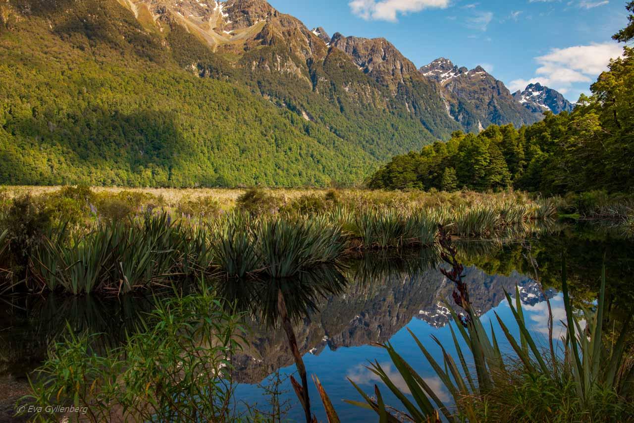 Mirror lake på vägen till Milford Sound