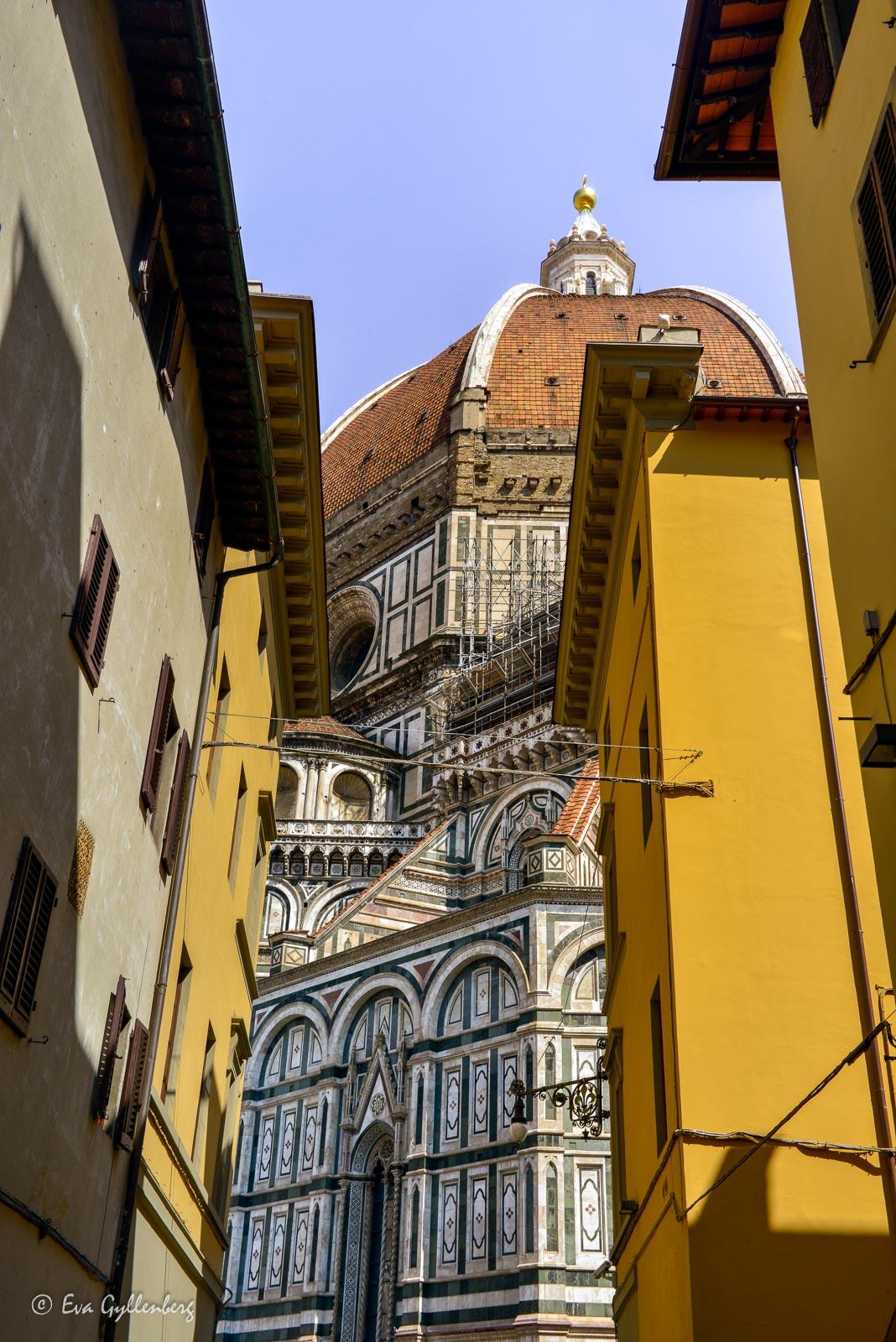 Fotoalbum från Florens 53