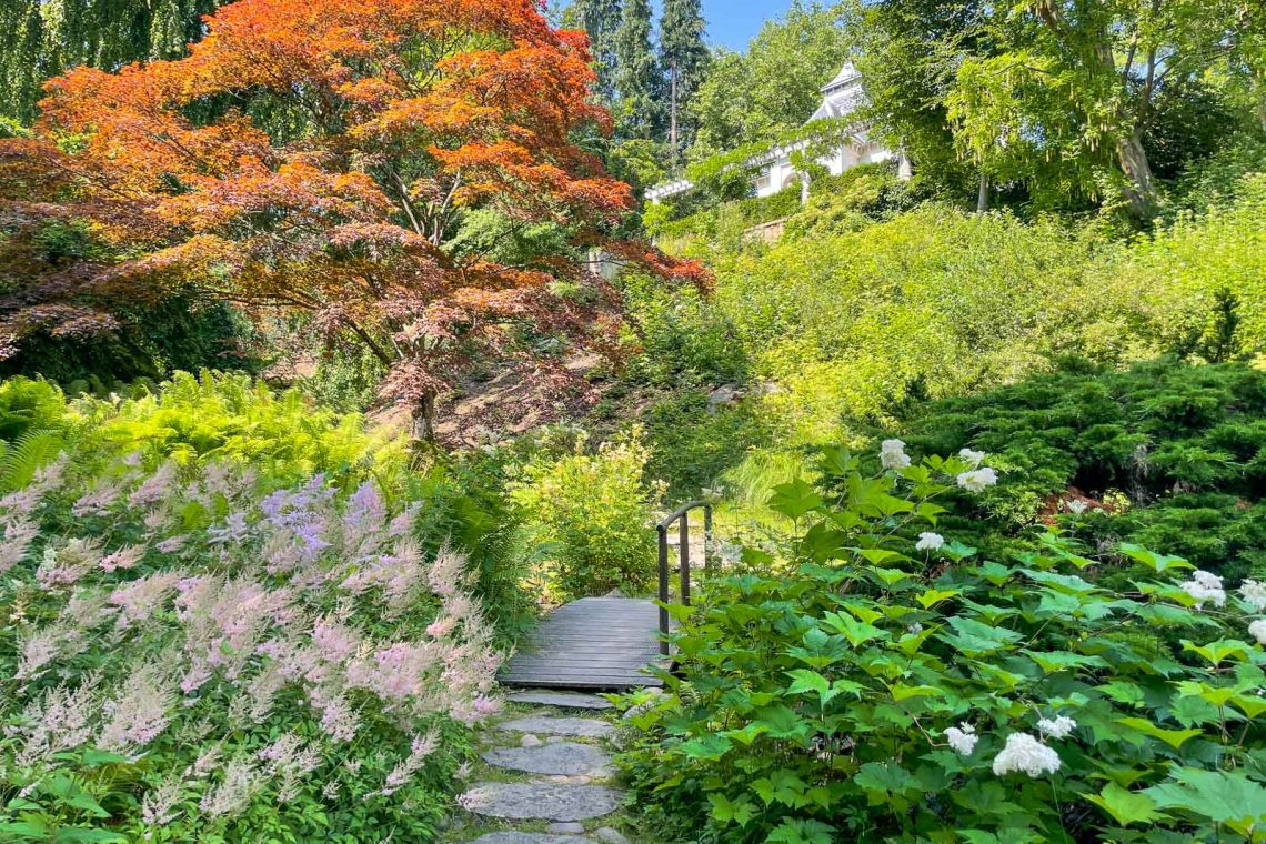 Colorful in the Japanese garden
