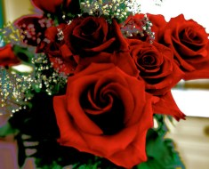 How To Make Rose Bouquet Resistant Longer?