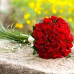 bouquet-of-red-roses