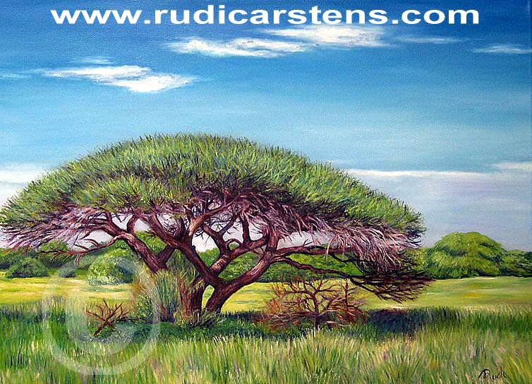 Painting of Thorn Tree