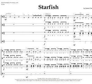 New Section for Drum Line Cadences - Downloadable Sheet