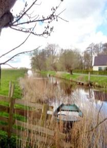 Briltil/Het Faan, Zuidhorn