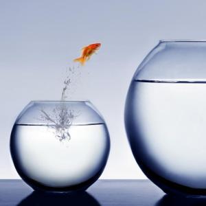 Berani Berubah untuk Sukses