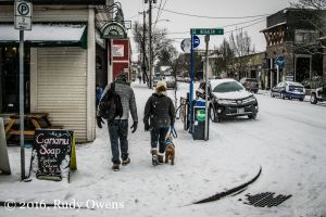 Sellwood in the Snow