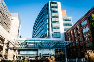 Providence Cancer Care Center: The Gilded Palace