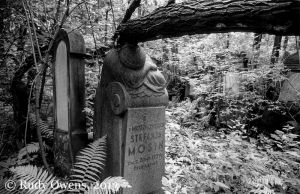 Warsaw Jewish Cemetery Statue
