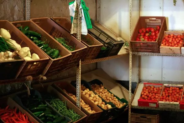 vente legumes