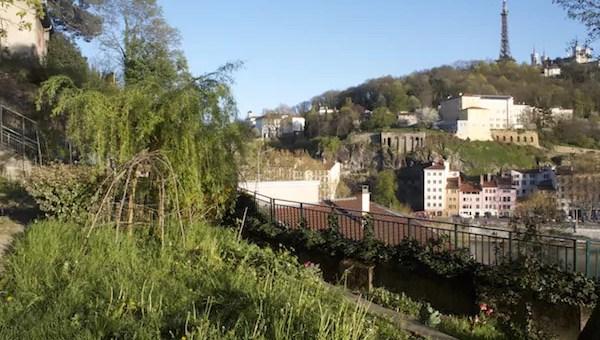 À Lyon, la gentrification de la Croix-Rousse… en chiffres