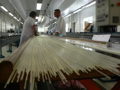 Fabrication du cordage en boyau naturel dans l'usine de Babolat à Ploërmel / DR