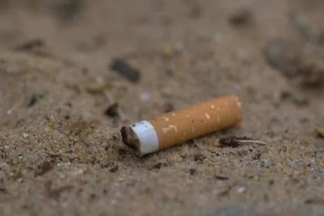 A Lyon, l'interdiction de la cigarette dans les aires de jeux est-elle une bonne idée ?