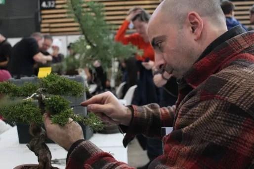 Jocelyn Pellegrini à la taille du bonsaï - Crédit Eva Thiébaud