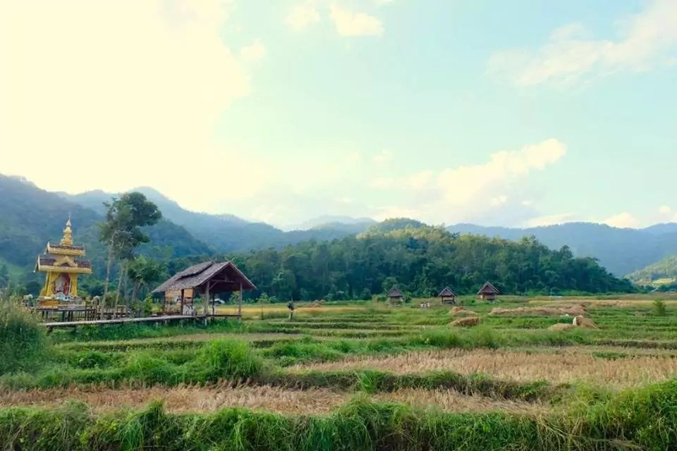 Au nord de la Thaïlande, hospitalité et paysages époustouflants