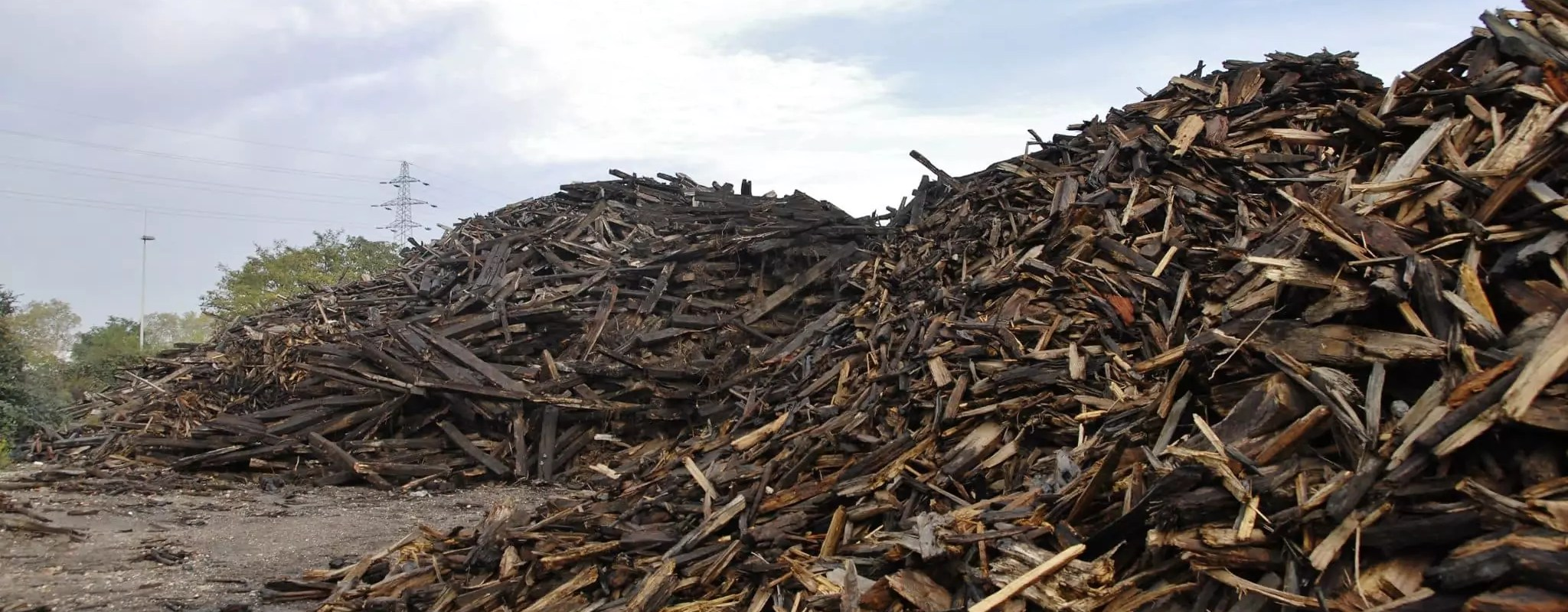 Bois toxique au Port du Rhin: l'entreprise ne pouvait pas «laisser ses clients sur le tapis»