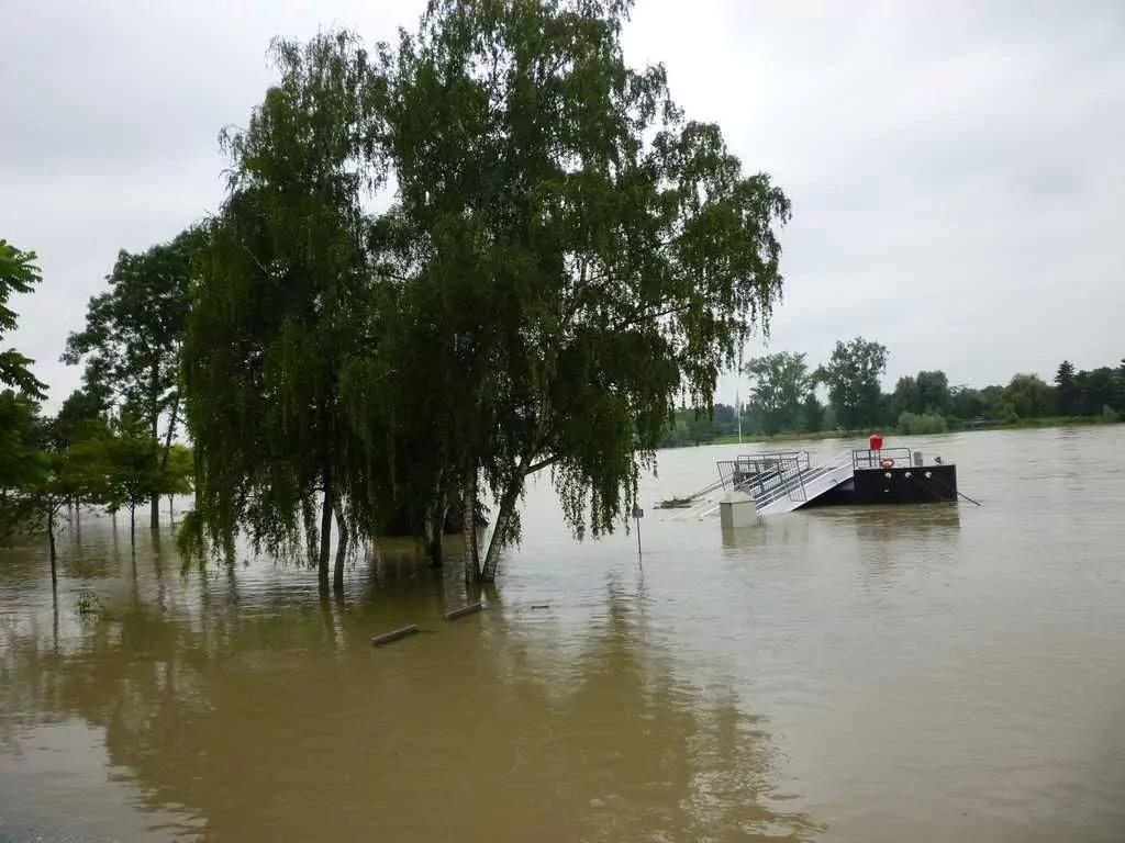 Changement climatique : l'Alsace menacée de graves inondations