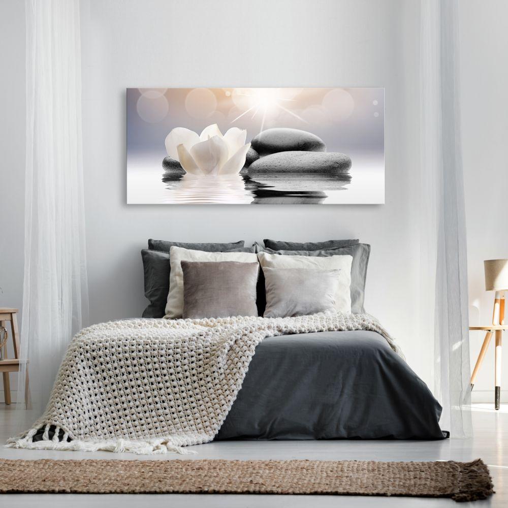 Marque Generique 100x45 Tableau Zen Admirable Natural Lightness 1 Part Wide Tableaux Peintures Rue Du Commerce