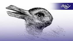 اختبار من علم النفس يكشف الكثير عن شخصيتك : ماذا رأيت في الصورة أرنب أم بطة؟
