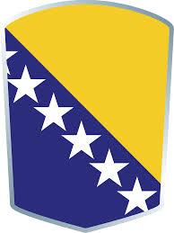 Bosna ragbi