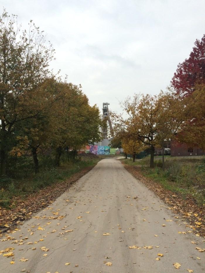 Toller Herbstweg mit Förderturmblick