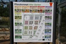 Schaubild des Pflanzenkonzepts