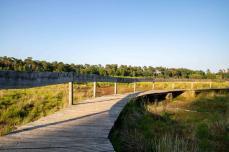 Der Holzbohlenweg