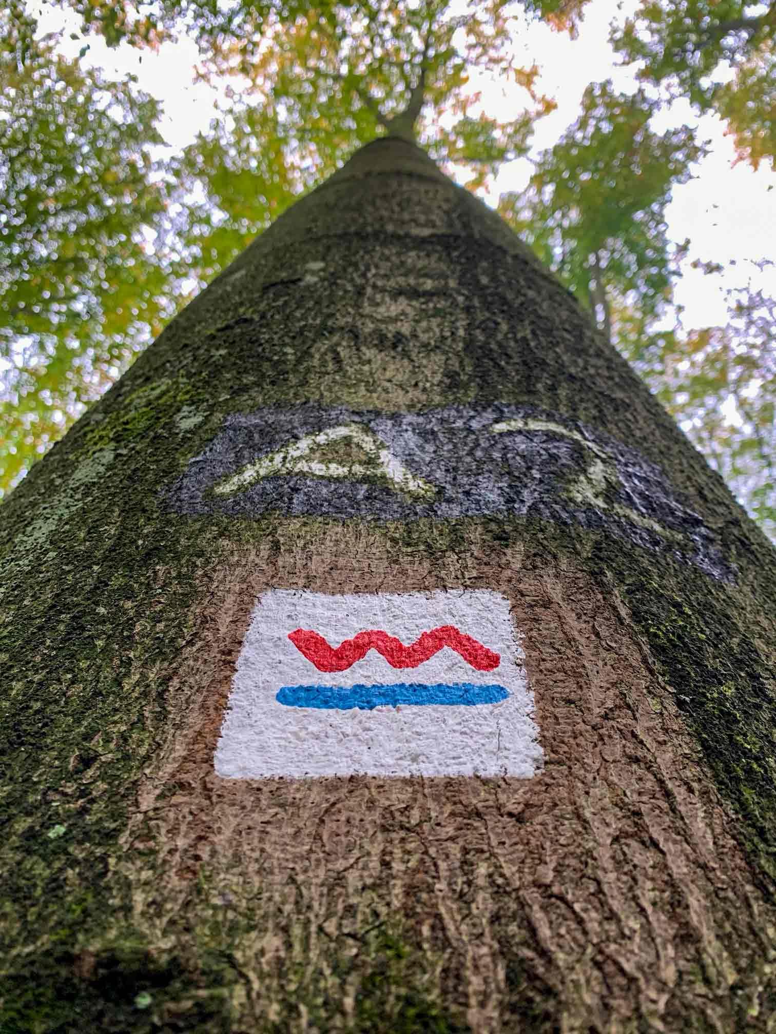 Baum mit Wandermarkierung