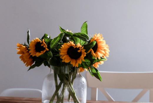 Meine Tipps: Besser und gesünder leben ohne großen Verzicht