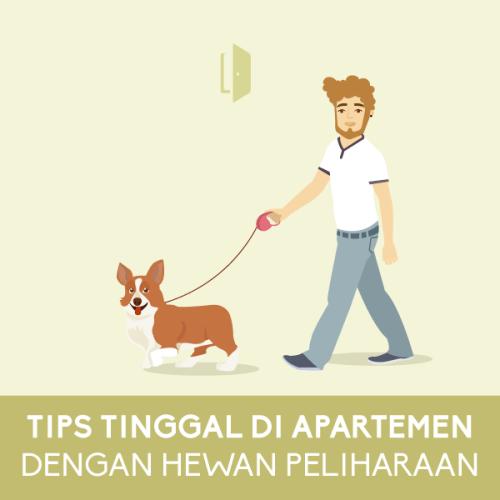 Tips-Tinggal-di-Apartemen-dengan-Hewan-Peliharaan-square