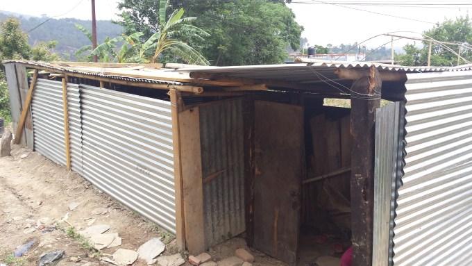 9 shed of nirupa poudel