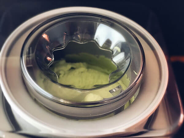 Avocado Coconut Ice Cream