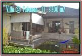 Villa dijual di Tabanan Bali VJCG016 0