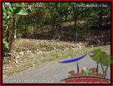 JUAL MURAH TANAH di TABANAN BALI 31 Are View kebun, sawah