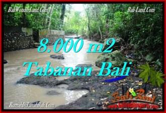 DIJUAL MURAH TANAH di TABANAN BALI Untuk INVESTASI TJTB287