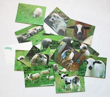 Rumpelhalde_Postkarten