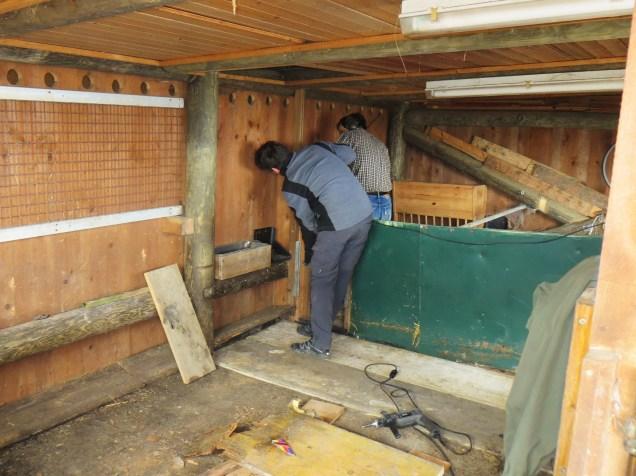 Der Boden im Stall musste teilweise erneuert werden ...