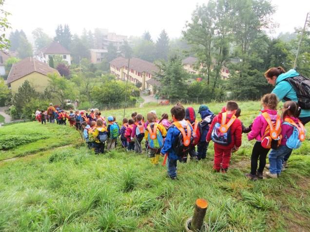 Fast 50 Kinder waren auf der Weide.