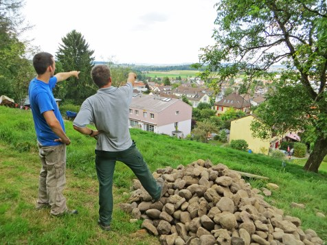 Von der Weide aus kann man sehen von welchem Feld die Steine stammen.