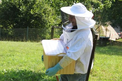 Ziemlich schwer sechs Rahmen voll Honig