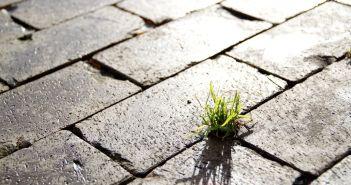 Gesund bleiben: Resilienz, was ist DAS eigentlich?