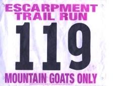 Escarpment Trail Run 30K 2014. Finish in 4:29:03, overall place #72— at Catskill, NY.