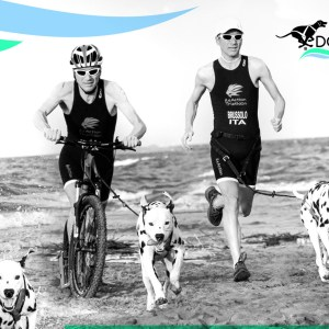 Dog Triathlon