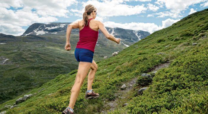 trail-préparation