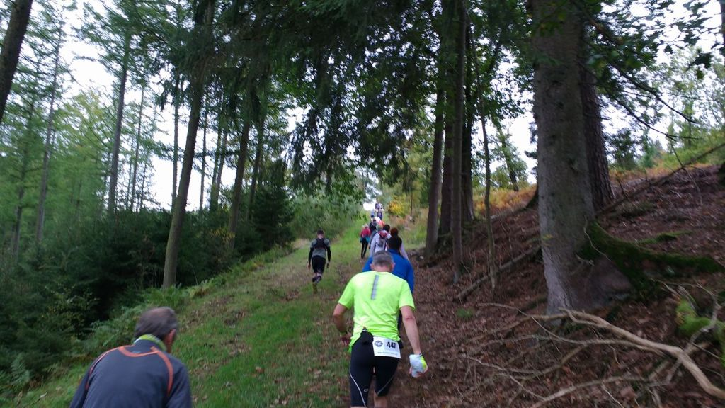 Trail des nutons 2017