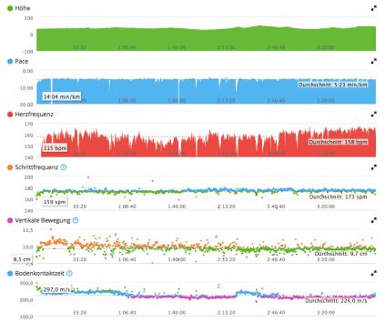 Statistik meines Berlin Marathon 2015