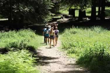 trail_foreste_casentinesi_104