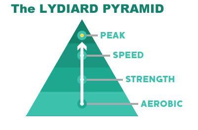 piramide di lyard