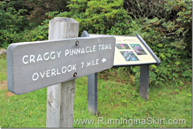 craggy_pincacle_sign