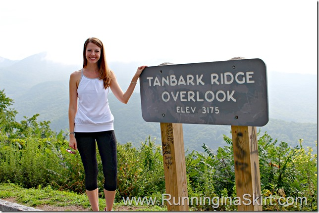 tanbark_brige_overlook_julie